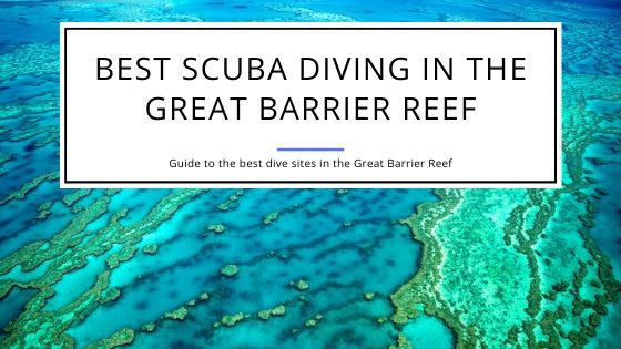 Best Scuba Diving in the Great Barrier Reef