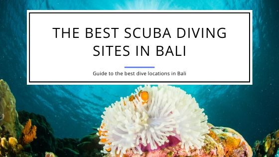 The Best Scuba Diving Sites in Bali