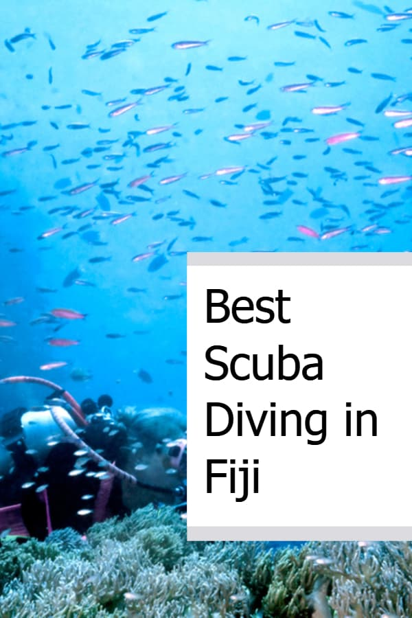 Best Scuba Diving in Fiji Pin