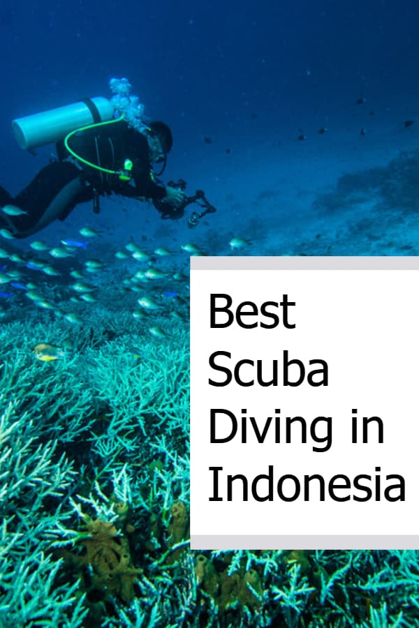 Best Scuba Diving in Indonesia Pin