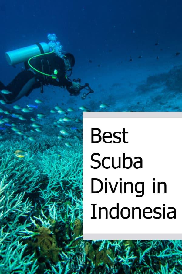 Best Scuba Diving in Indonesia Pin