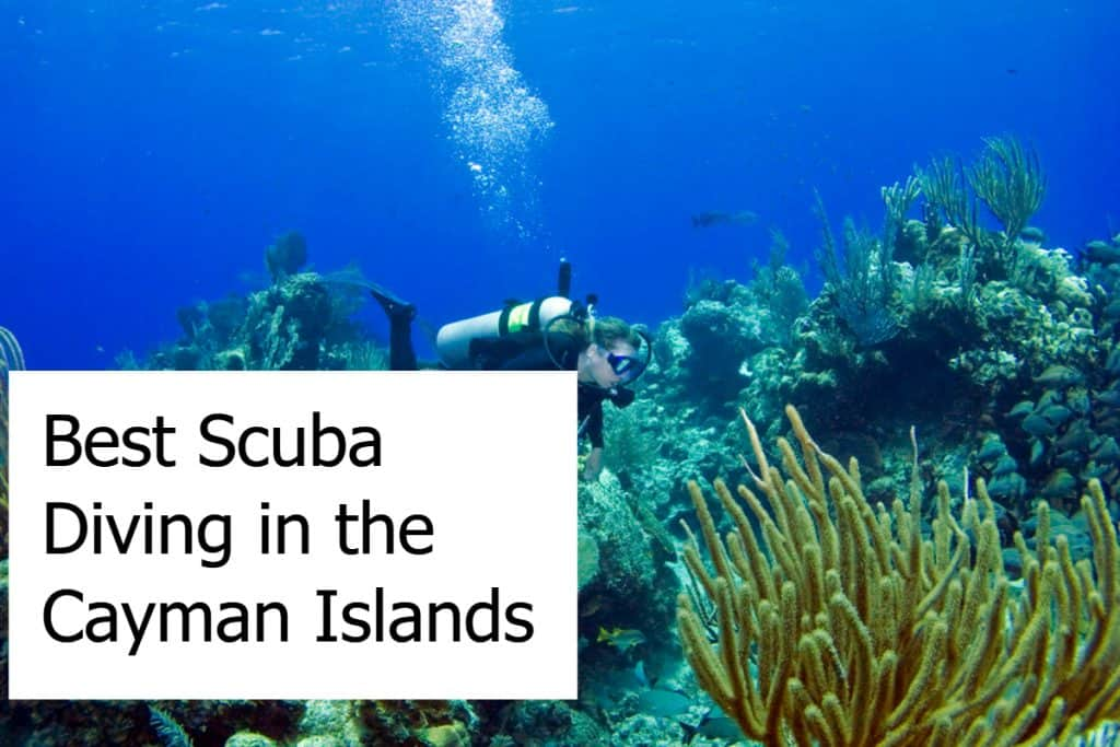 Best Scuba Diving in the Cayman Islands