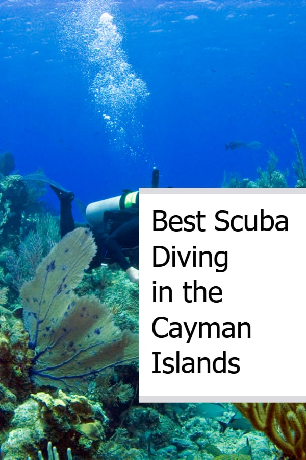 Best Scuba Diving in the Cayman Islands Pin