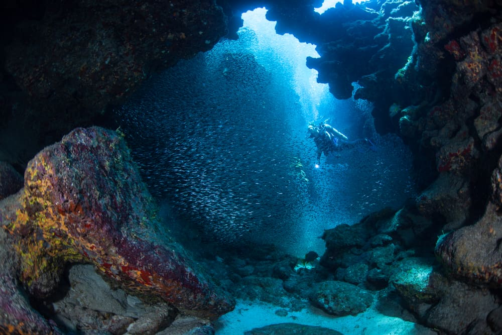 Diving an underwater cavern in the Caymans