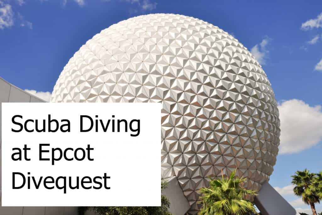 Scuba Diving at Epcot Divequest