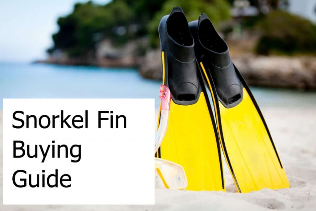 Snorkel Fin Buying Guide