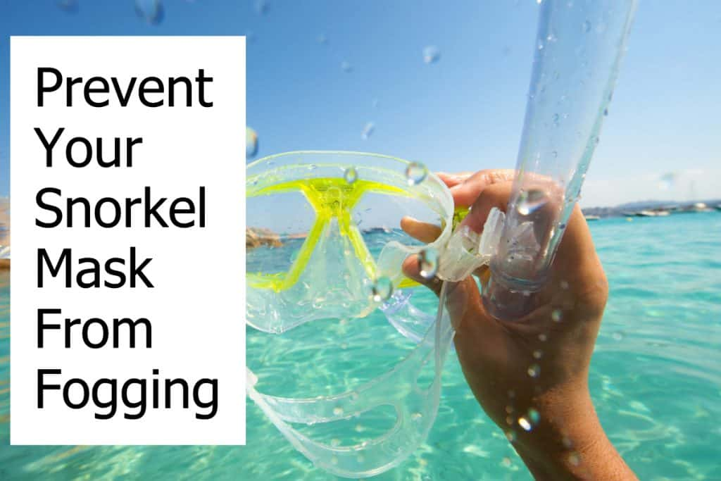 How to stop your snorkel mask from getting foggy?
