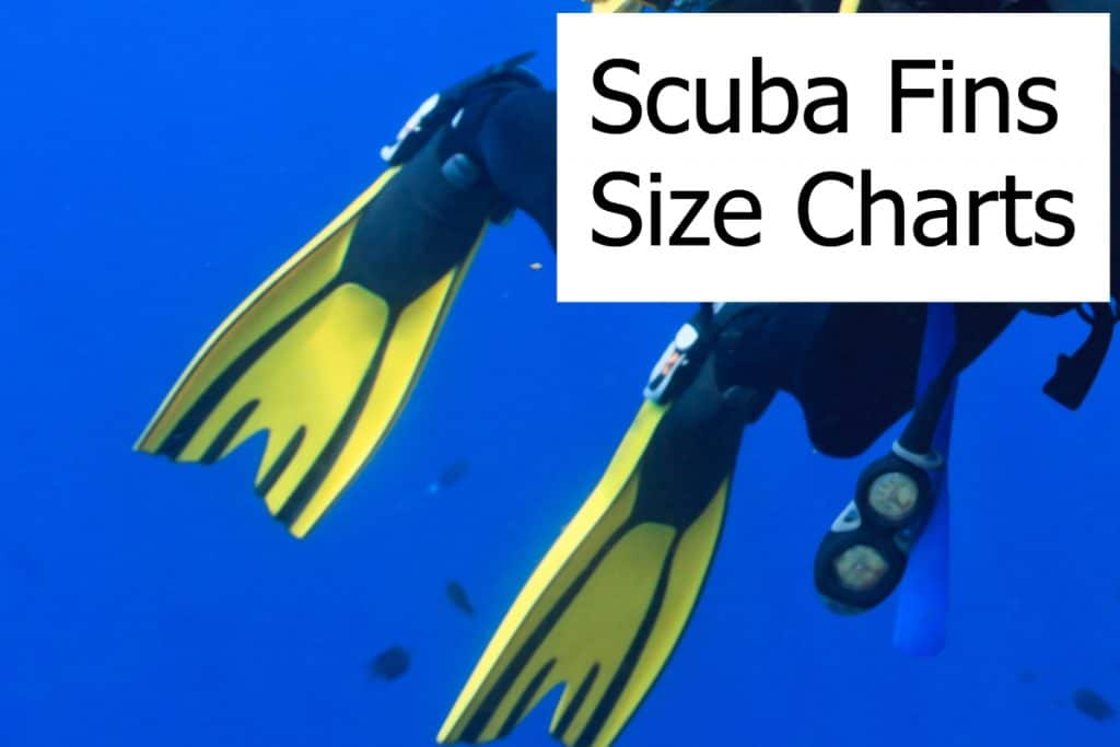 Chart and table for the right sizing of various scuba dive fins brands