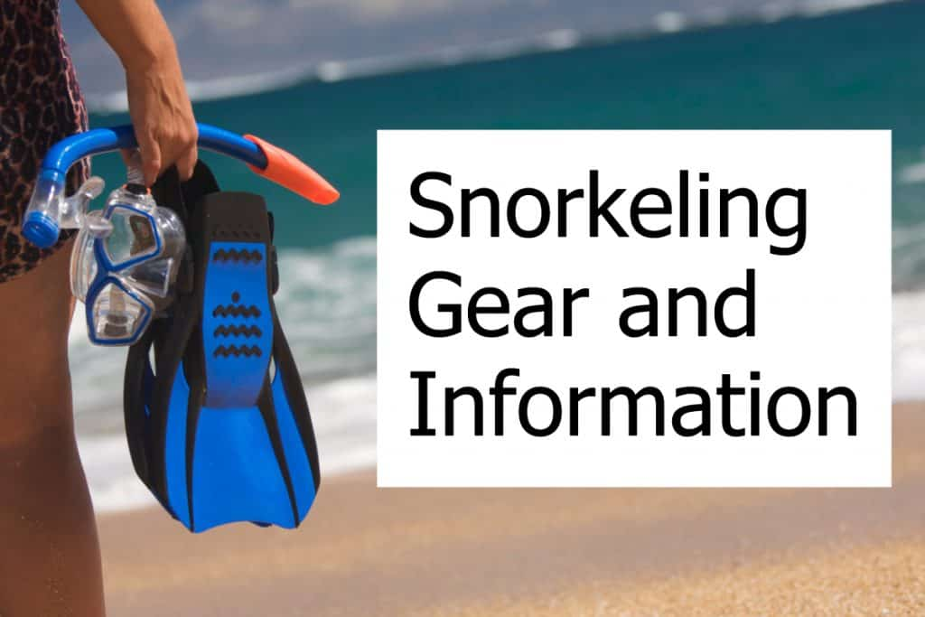 All about snorkeling including guides and equipment reviews