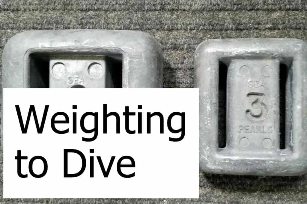What do you need to know about weights for scuba diving? Check out how to use the correct weights for your dives.