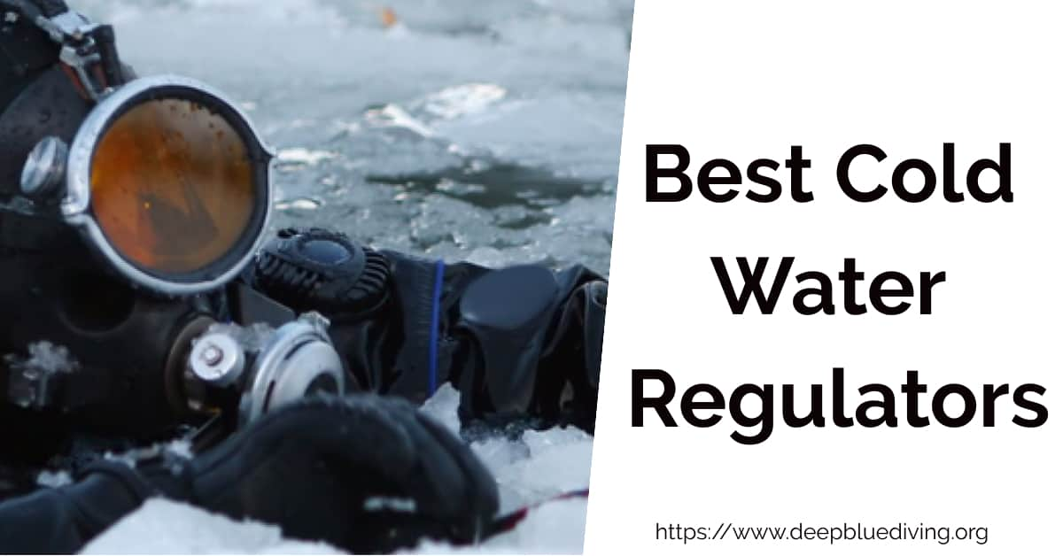 Best Regulators to Dive in Cold Water