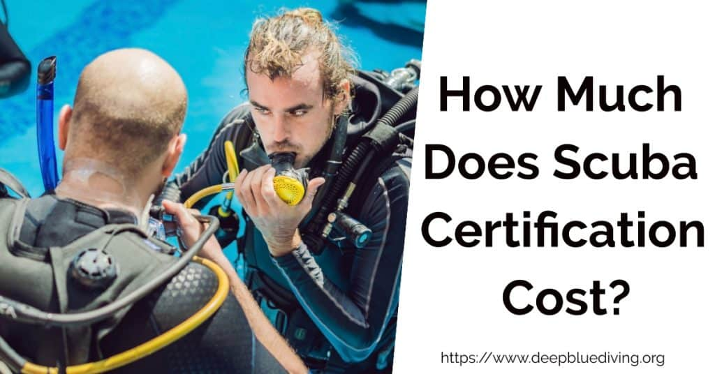 What are the scuba diving certification costs?