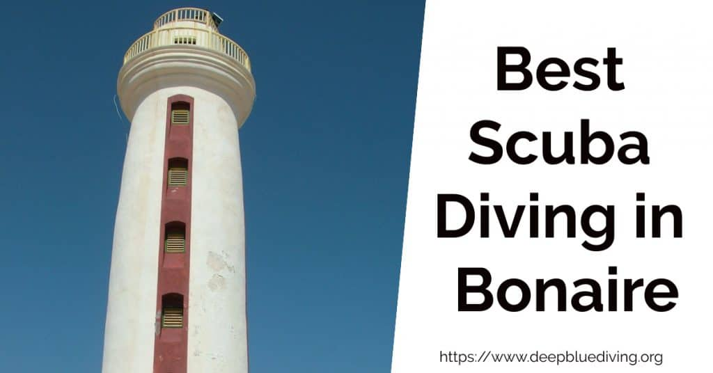 Overview of the best dive spots in Bonaire Island
