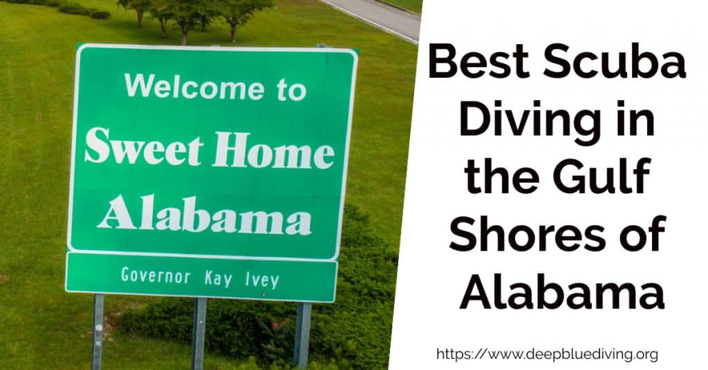 Best Scuba Diving in Alabama's Gulf Shores
