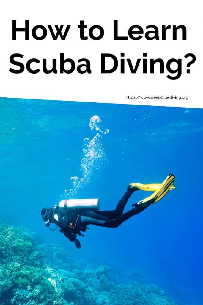 Beginner's Guide on how to learn to scuba dive
