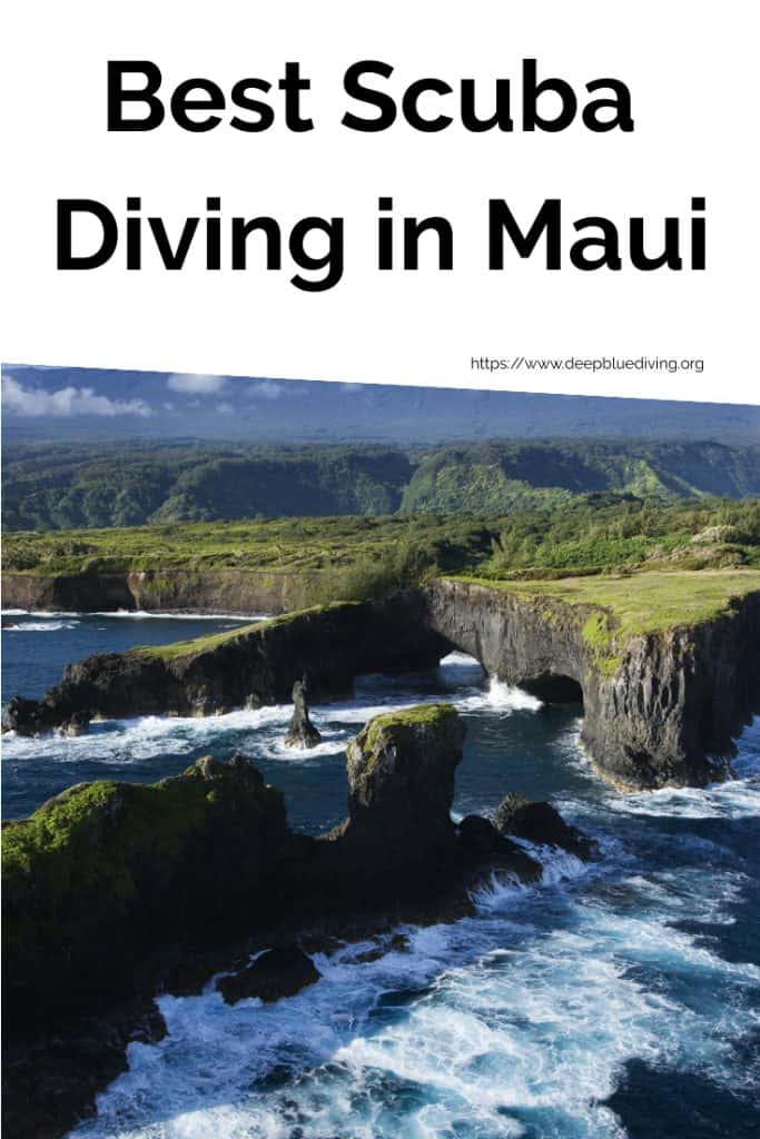 Best Scuba Diving Locations in Maui, Hawaii